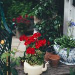 What Reclaimed Garden Items Should You Decorate With?